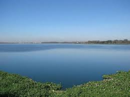 Whitefield's Lakes