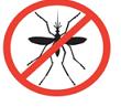 Dengue fever – Causes, Symptoms, Prevention & Treatment