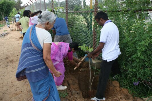 Hundreds of saplings planted around lake in Whitefield